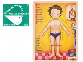 Puzzle - lidské tělo